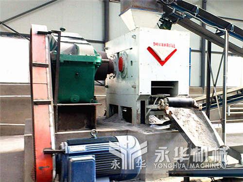 年产10万吨xingmei生产线